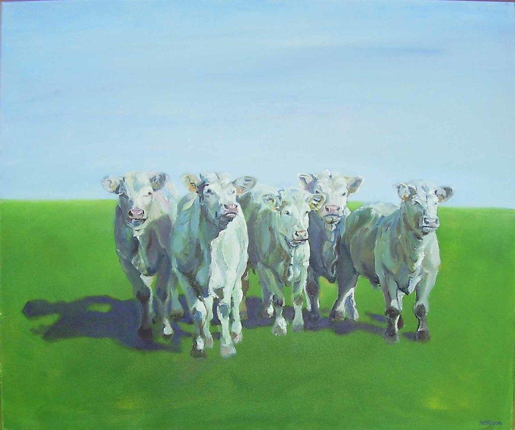 franse koeien, 40 x 50, olieverf op doek, verkocht