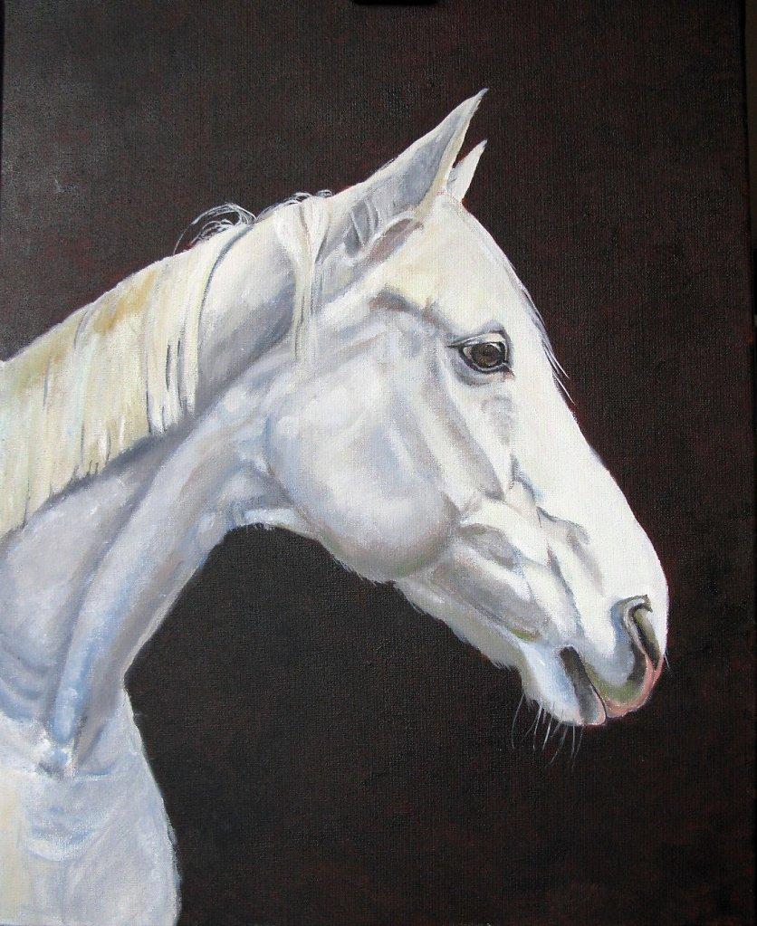 paard van Sinterklaas, 50 x 40, olieverf op doek, verkocht